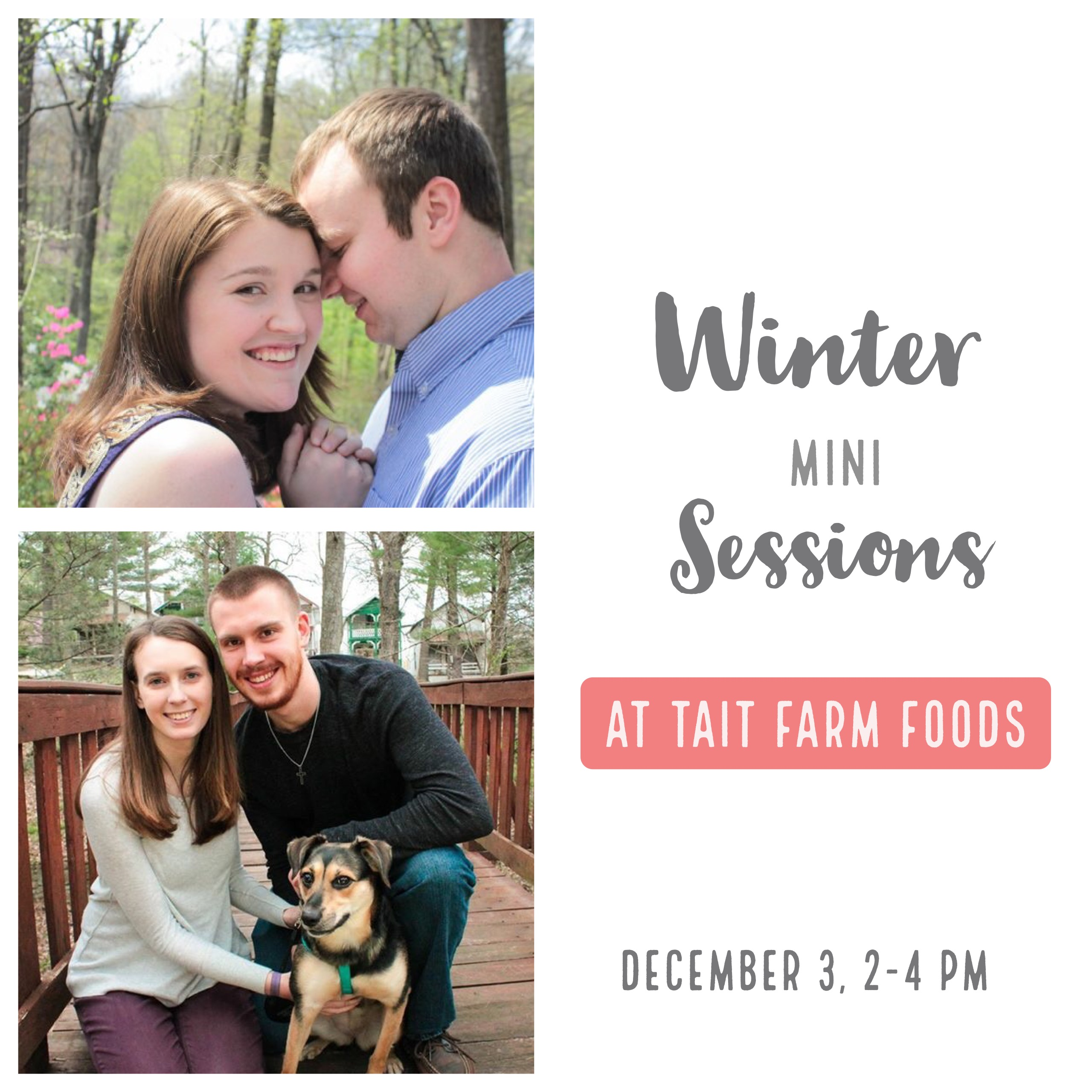 Winter Mini Sessions at Tait Farm Foods